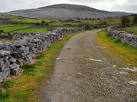 Green Road of the Burren
